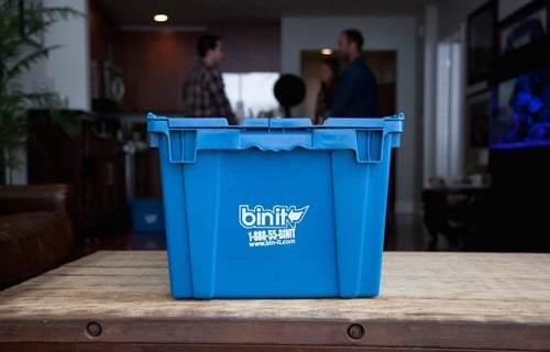 Tips for Moving With a Cat - Bin it